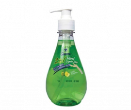 GINVERA 2 In 1 Hand Liquid Soap - Apple